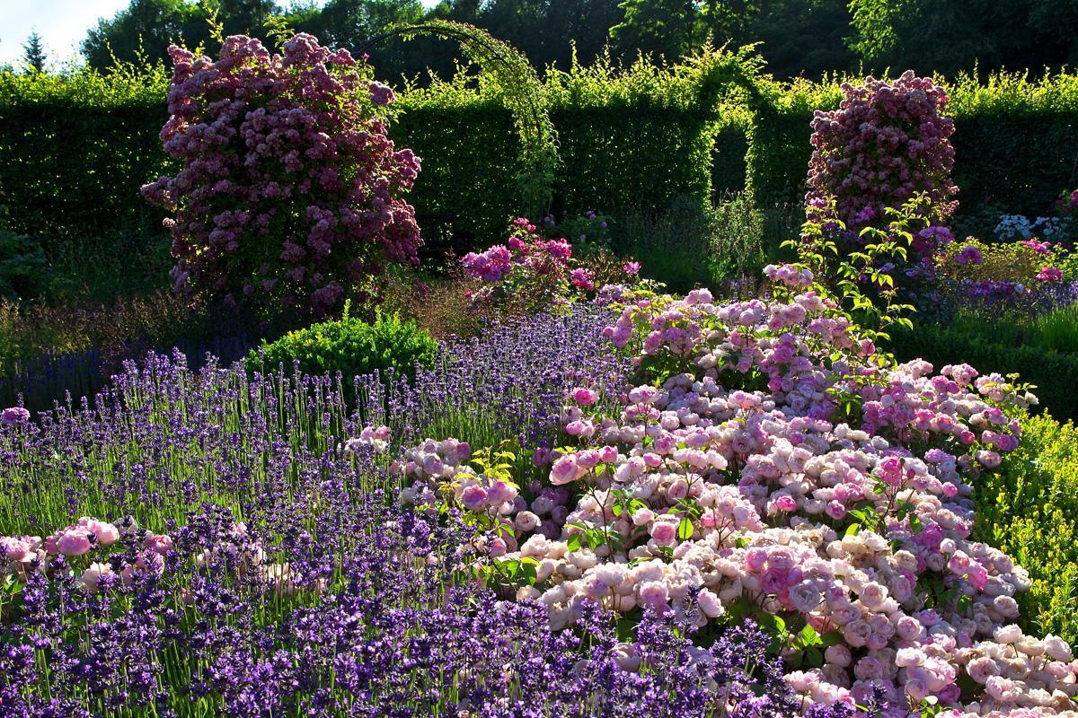 G rten ohne grenzen - Garten der sinne merzig ...
